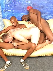 Gay white twink sucks & fucks 2 black dicks