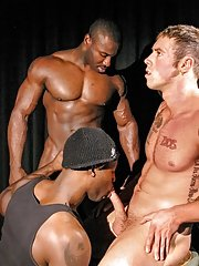 Marc Williams::Nubius::Brock (B) - in Gay Porn Photos